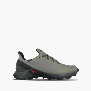 נעליים סלומון לגברים Salomon Alphacross Gore-Tex GTX - אפור