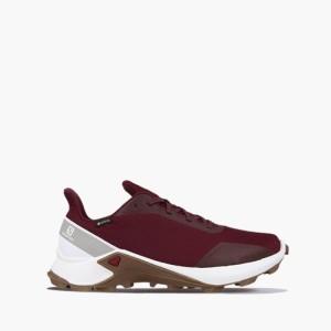 נעלי ריצת שטח סלומון לגברים Salomon Alphacross Gore-Tex GTX - אדום