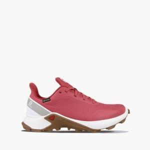 נעליים סלומון לנשים Salomon Alphacross Gore-Tex GTX W - ורוד