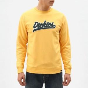 ביגוד Dickies לגברים Dickies Campton - צהוב