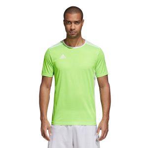 ביגוד אדידס לגברים Adidas Entrada 18 JSY - ירוק בהיר