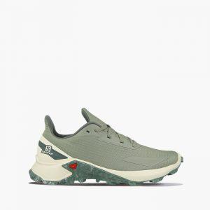 נעלי ריצה סלומון לגברים Salomon Alphacross Blast - ירוק