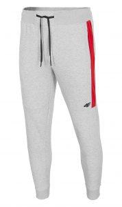 מכנסיים ארוכים פור אף לגברים 4F Stripe - אפור