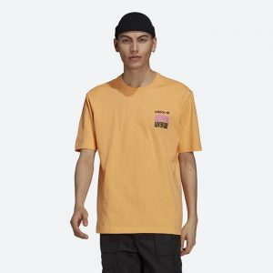 חולצת T אדידס לגברים Adidas Originals Adventure Mountain Back Print - כתום