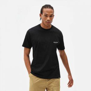 חולצת T Dickies לגברים Dickies Quamba Box Tee - שחור