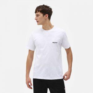 חולצת T Dickies לגברים Dickies Quamba Box Tee - לבן