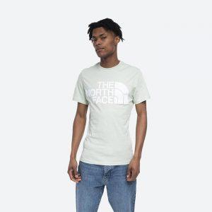 חולצת T דה נורת פיס לגברים The North Face Standard SS Tee - ירוק