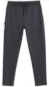 מכנסיים ארוכים פור אף לגברים 4F H4Z21 SPMD010 - אפור