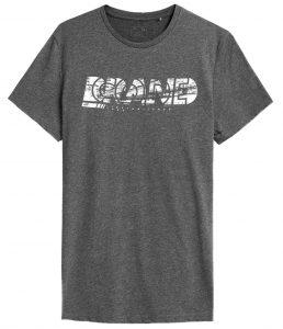 חולצת T פור אף לגברים 4F H4Z21 TSM010 - אפור