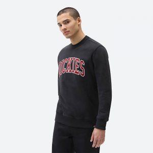 חולצת T Dickies לגברים Dickies Aitkin - שחור