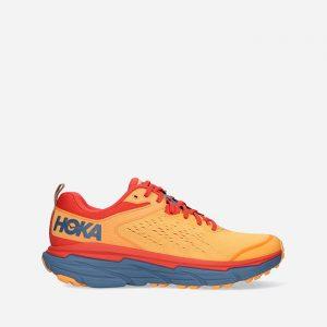 נעלי ריצה הוקה לגברים Hoka One One Speedgoat 4 - צבעוני בהיר